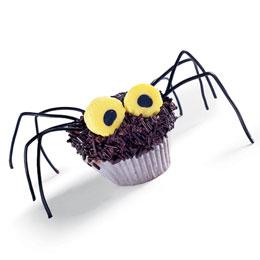 Hairy-daddy-long-legs-cupcakes-halloween-recipe-photo-260-FF1001TREATA12