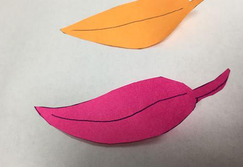 Leaf-image-cutout
